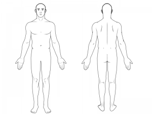 body-diagram